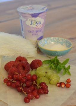 Berry Summerrolls Zutaten - Berry Summer Rolls mit Kokos Dip auf Holztisch