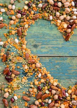 5 Gründe warum du Hülsenfrüchte essen solltest - Verschiedene Hülsenfrüchte liegen in Herzform auf einem türkisen Tisch - © Shutterstock